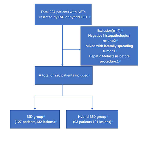 P0537 Efficacy And Safety Of Hybrid Esd For The Rectal