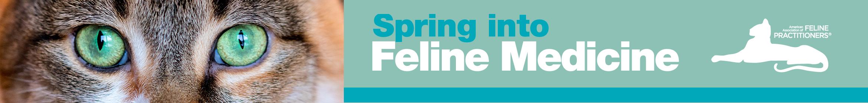 2021 Spring into Feline Medicine eConference Main banner