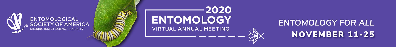 Entomology 2020 Main banner