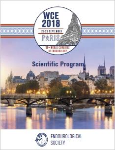 PDF Program